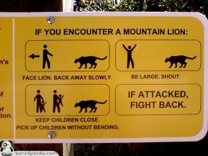 Sign Mt Lion