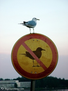 Sign Seagull