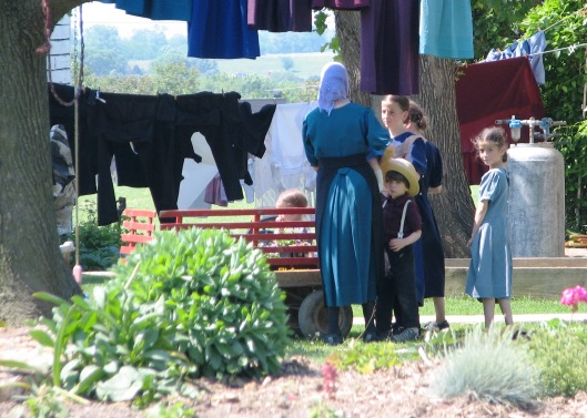 Amish World 1