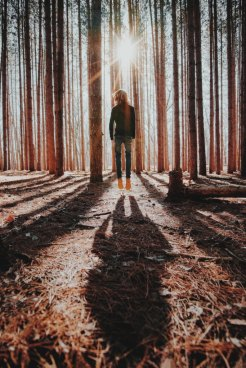 Bryan Minear via Unsplash.com