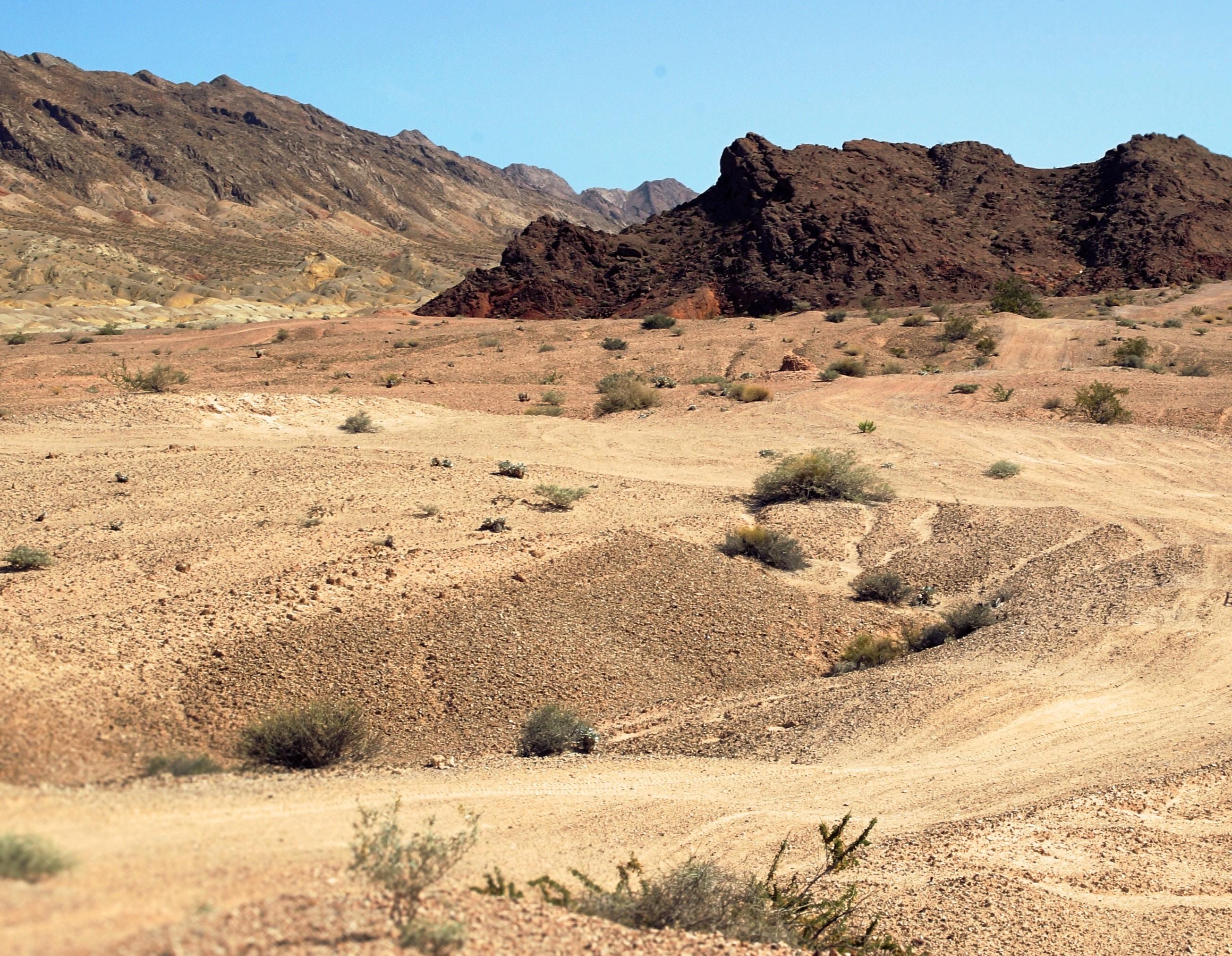 Unsplash nicolas-cool-107337-Desert Crop
